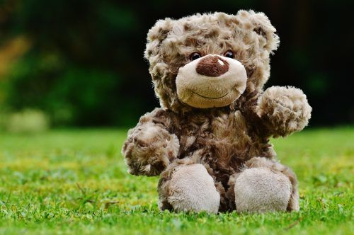 Ein brauner Teddybär sitzt auf einer Wiese.