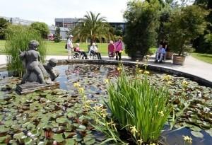Auf dem Bild ist der Seerosenteich im Botanischen Garten Karlsruhe zu sehen.