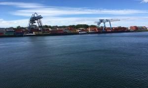 Blick auf den Hafen in Wörth.