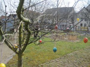 Ein Baum ist geschmückt mit Ostereiern.