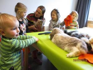 Kita Kinder spielen mit Hasen.