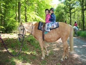 Zwei Kita-Kinder sitzen auf einem brauen Pferd im Grünen.