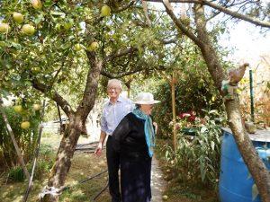 Zwei Senioren stehen in einem Sommergarten.