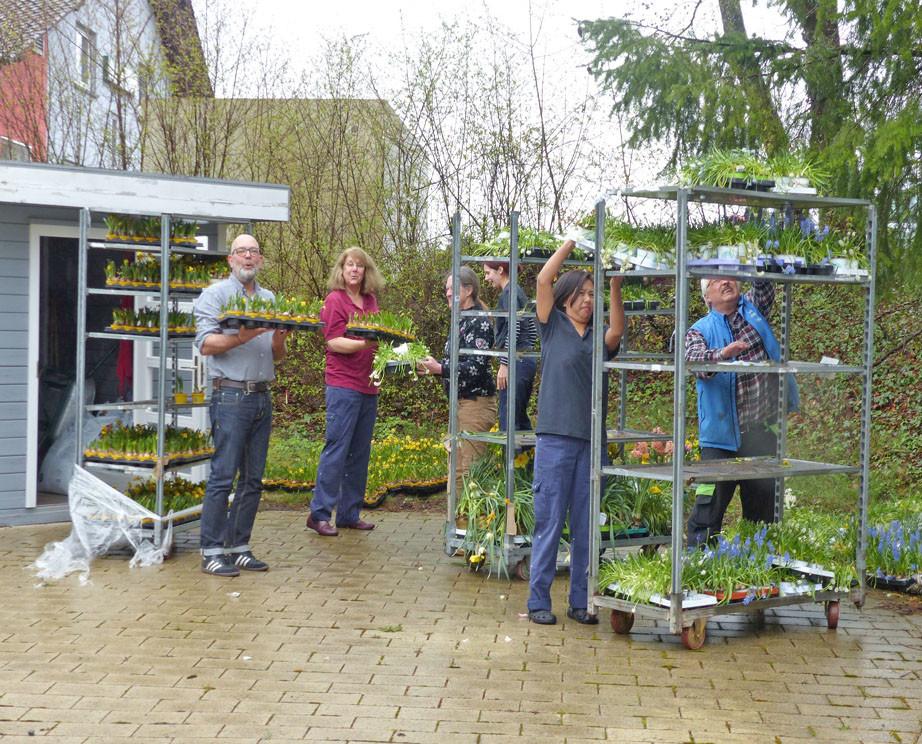 Fünf Menschen haben Pflanzen in der Hand und legen Sie in Regale.