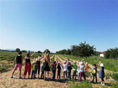 Gruppe von Kindern und Erzieherinnen der Kita Krone auf einem Erdbeerfelder.
