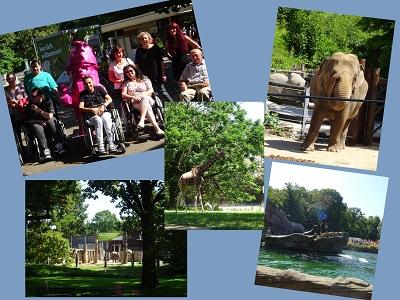 Collage des Zooausflugs mit Bild der Teilnehmerinnen und Fotos von den Tieren.
