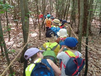Kitakinder von in der Gruppe im Wald unterwegs
