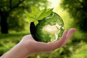 Eine Hand hält eine Kugel mit einem grünen Wald fest.