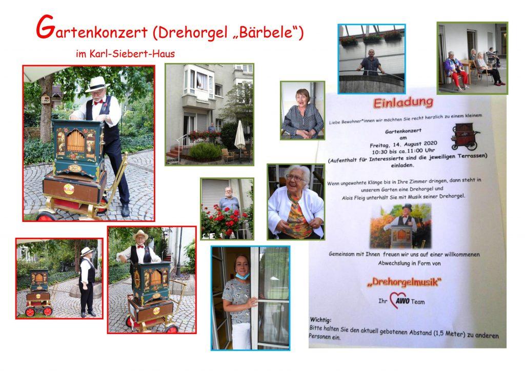Collage aus Bildern